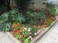 Le site d 39 informations de bourges bourges for Le jardin des fleurs bourges
